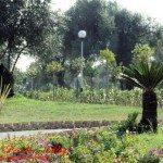 Vibo Valentia - parco urbano di Moderata Durant