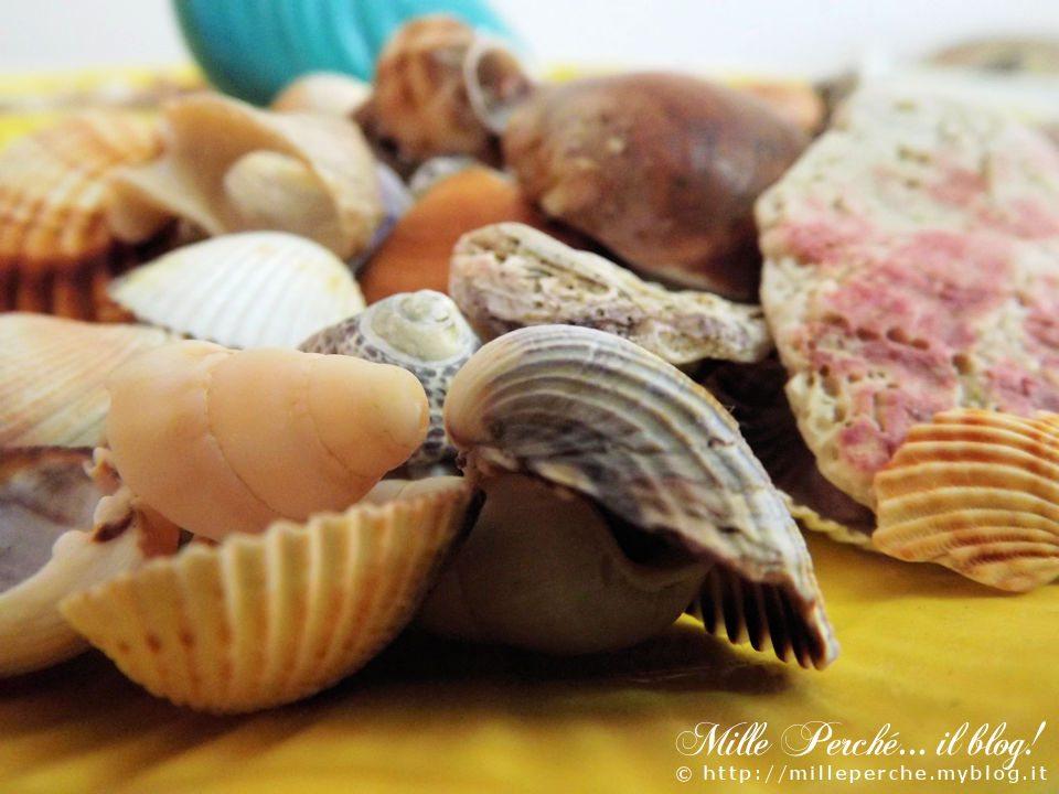 conchiglie e suono del mare
